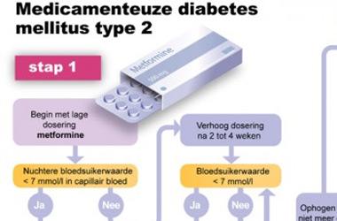 Infographic met beslisboom over wanneer je welke medicijnen krijgt als je diabetes mellitus type 2 hebt. De inhoud is nu gedateerd.