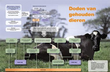 Infographic over ethische beslisboom wanneer je gehouden dieren mag doden of niet