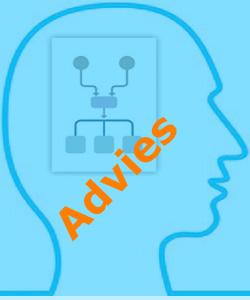 Advies-knop-blauw-site1